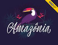 Amazônia Font - Web