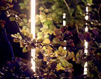 Garden Of Disco