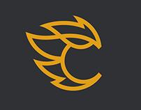 Fernandez Studio Logo & Site