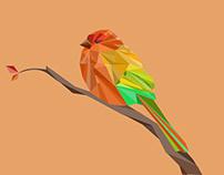Polygonal bird
