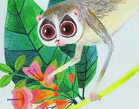 Arboreal rainforest creatures