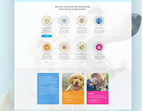 Rolda Webiste and Icon design