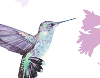 Hummingbird and flower silk scarf textile illustration.