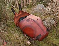 Dityscus Marginalis backpack