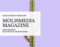 Gestión contenidos Magazine Molismedia