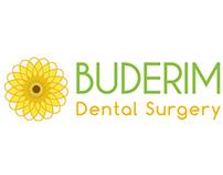 Buderim Dental Surgery Branding