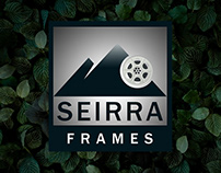 Logo Design and Intro Video - Film production