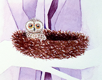 Children's Alphabet Book Illustration
