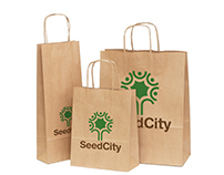 SeedCity - Concept and Visual Identity