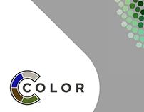 CColor - System