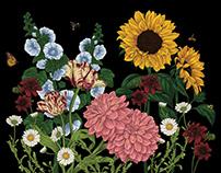 Floral Illustrations for packaging