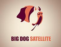 Big Dog Satellite Logo