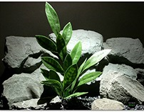 plastic aquarium plant | bay leaf