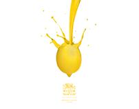 Winsor & Newton - Oil Paint - Advertising
