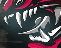 'Seattle Dragons Concept' Logo