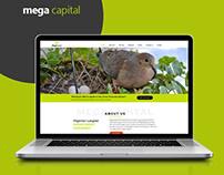Mega Capital Website Presentation