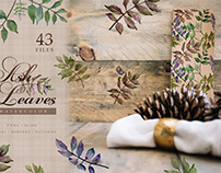 Ash leaves PNG watercolor set