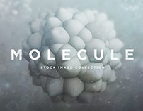 Molecule Designed by RuleByArt