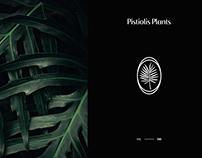 Pistiolis Plants