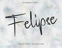 Felipse Font - Beautiful Signature