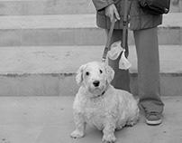 Passejant el gos. Un tribut a Keith Arnatt