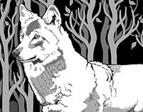 Wolf Freedom