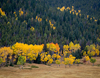 October Colorado Colors