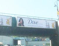 Dove - Summer 2013