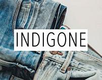 Indigone - Social media and communication plan