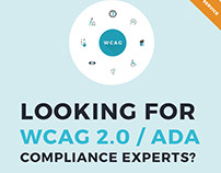 WCAG 2.0 web accessibility development services