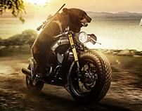 Unleash The Wild Rider In You