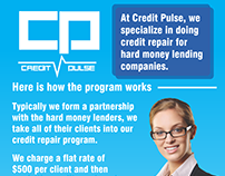 Credit Pulse Credit Program - Company Flyer