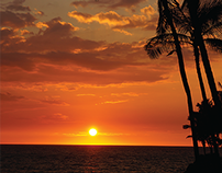 #RentingParadise - A Hawaii Vacation