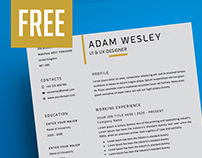 Resume Template, Cover Letter + Business Card - FREE