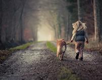 Animal insurance