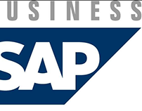 How SAP Business One Works?