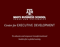 Mays Business school -marketing material