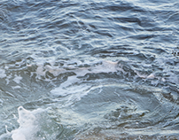 ocean fellings