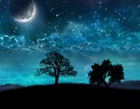 Night Waltz