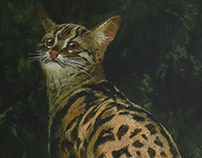 Cats of South-East Asia