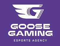 Goose Gaming — esports agency branding