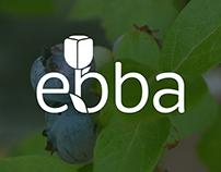 Ebba LLC Logo