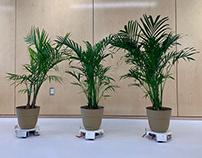 Botany Bot