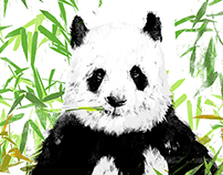 Born in China - DisneyNature