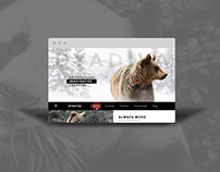 DyaDiva Agency Template