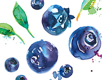 Albert Heijn fruitspread illustrations
