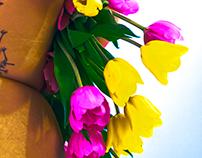juliusgranstrom.com juliusgranstrom.tumblr.com