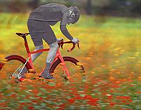 BH Bikes - Part II