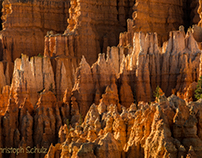 Bryce Canyon Teil 9