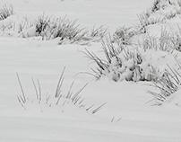Snow Drawing 1